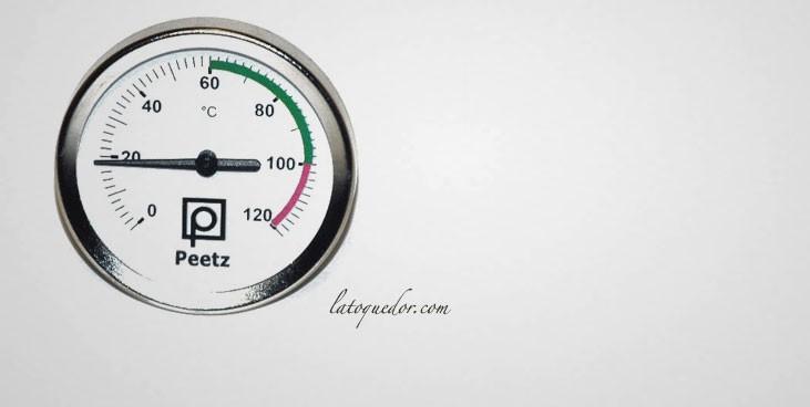 Thermomètre pour fumoir 0/+120°C