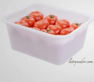 Bac alimentaire rectangulaire profond